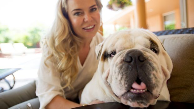 """English Cross Australian Bulldog Max and his owner Magdalena Montalvo. """"Max"""" is the most popular ACT dog name this century."""