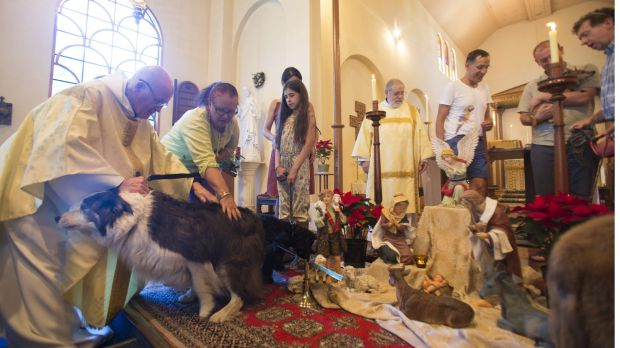Father Roger Kelly during the blessing of the animals service.