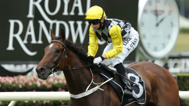Great run over 2000m: Kathy O'Hara rides Mighty Lucky to a strong win in the Summer Cup at Randwick.