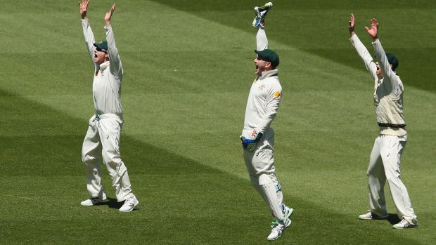 Steve Smith of Australia (left) Peter Nevill (centre) and Adam Voges appeal unsuccessfully  for an LBW against Rajendra ...