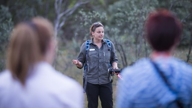 Mulligans Flat Sanctuary ecologist Dr Kate Grarock says turtles migrate at different times of the year.