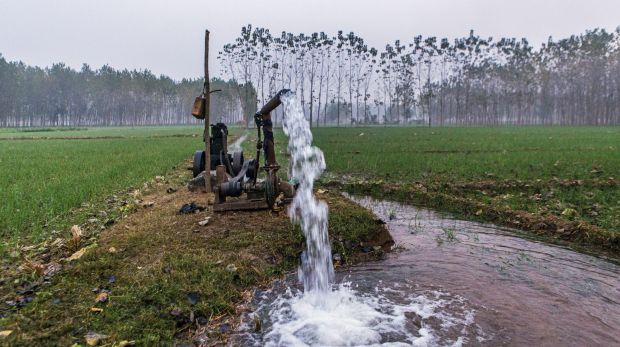 Water is pumped from underground at a farm in Haryana state, where an ambitious project is underway to recreate the ...
