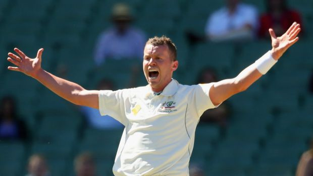 Injury concern: Peter Siddle is battling an ankle complaint.