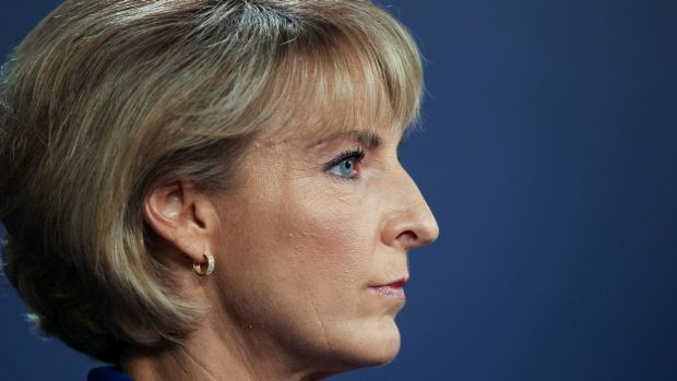 Minister for Women and Employment Michaelia Cash was a big winner in Malcolm Turnbull's new-look cabinet.