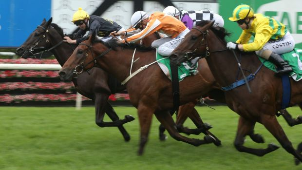 More to come: Adam Hyeronimus and Caped Crusader (far left) score at Randwick recently.