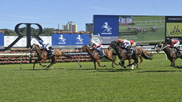 In the winner's circle: Vilanova holds off the challengers at Randwick.