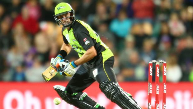 Old head: Mike Hussey, 40, has been integral to the Sydney Thunder's resurgence.