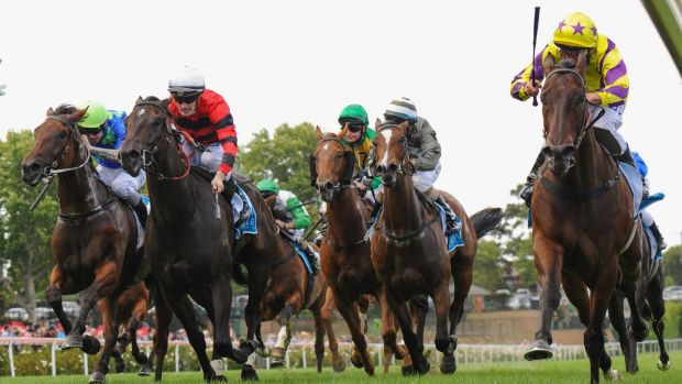 Damien Oliver guides Rocky Boomboa (right) home ahead of Mark Zahra on Love Days (second from left) at Moonee Valley on ...