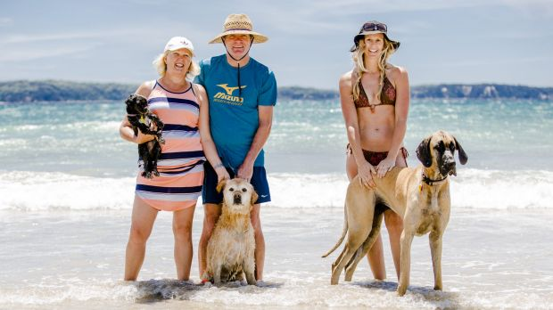Janette and David Sloan, with Pepper and Flynn, and Belinda Wedgwood, with Delta, enjoy their time at the beach.