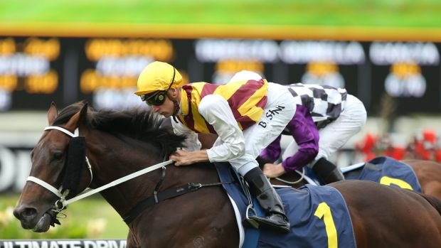 A keeper: Preferment has given owners Chris and Frank Cook plenty to be happy about.
