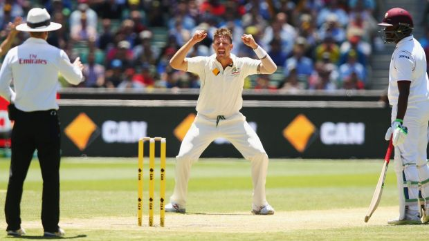 In doubt: James Pattinson is battling shin splints ahead of the New Zealand Test series.