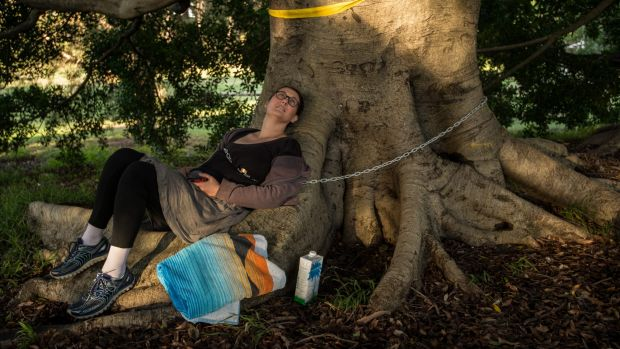 Kathlene Hennessy chained herself to a tree for several hours on Thursday night.