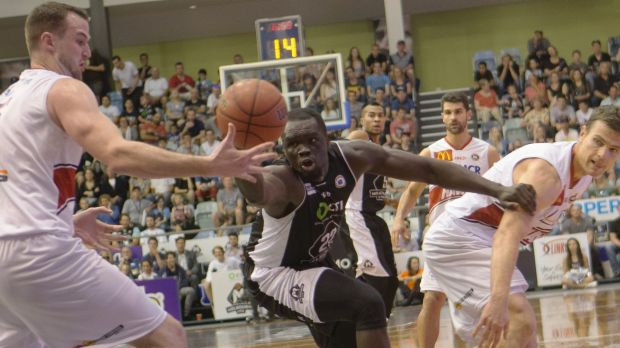 Illawarra's A.J. Ogilvie and Melbourne's Majok Majok both have their eyes on a loose ball.