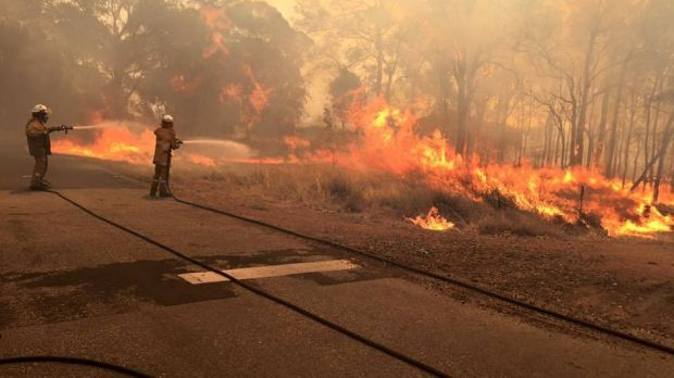 Photo of the fire-front in Waroona and Yarloop last week.