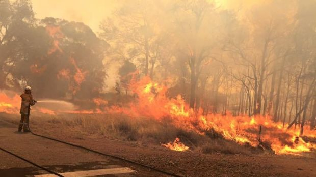 Firefighters fight to control the fires south of Perth.