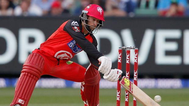 World Cup goal: Matthew Wade bats last weekend in the BBL. He has his sights set on playing for Australia at the 2019 ...