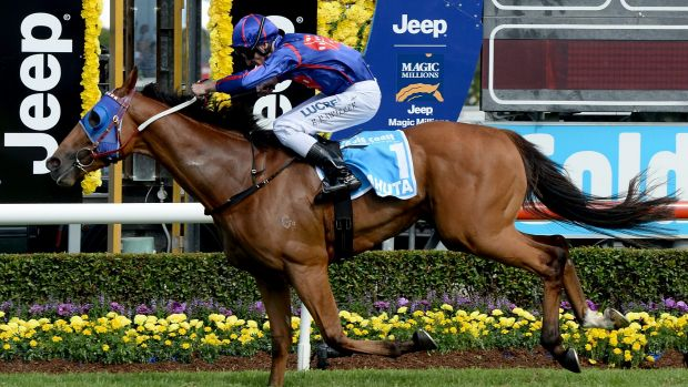On the money: Mahuta wins the Magic Millions Guineas.