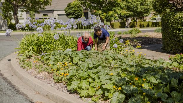 Jim Laity and Chanla Khanthavongsa have had a veggie garden on their nature strip for 10 years, with government approval.