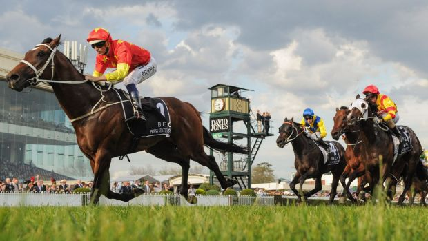 Trial: Press Statement will line-up at a Warwick Farm barrier trial on Monday.