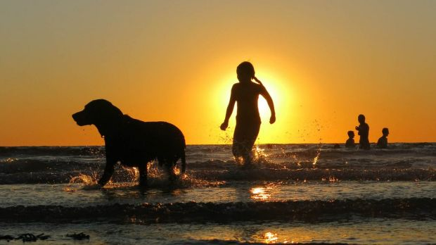 Dog days of summer across much of south-eastern Australia.