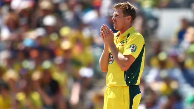 Leaking runs: James Faulkner looks on during the one-day international between Australia and India at the WACA.