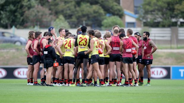 The Bombers at training this week.