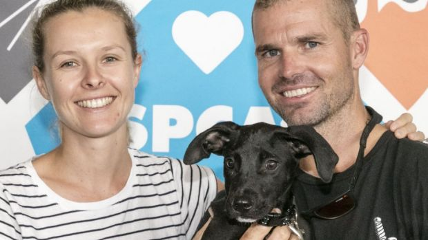 Megan Cochrane and Chris Williamson found young Max at the RSPCA Pop Up Adoption event.
