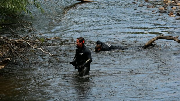Victoria Police divers in the Ovens River as part of the search for Karen Chetcuti.