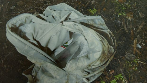 A bag where Reginald Mullaly's body was found.