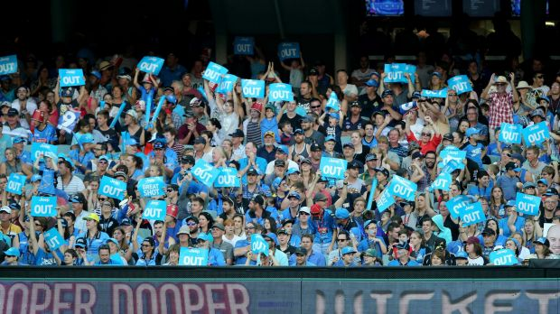 No room for suspicious activity: Fans of the Big Bash enjoying the action.