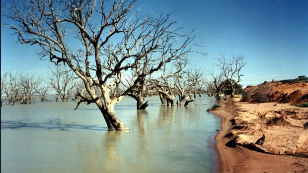 The future of the Menindee Lakes and the lower Darling River is at risk, farmers say.