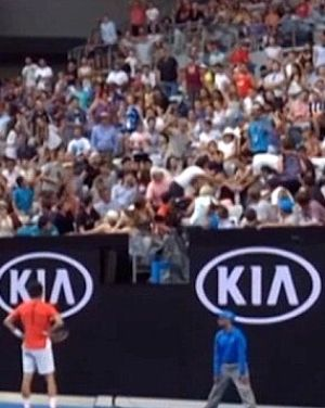 Bernard Tomic watches as the drama unfolds.