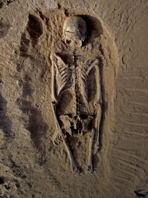 Another view of the skeleton, which was found lying prone.
