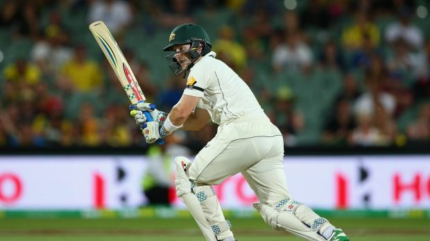 Opportunities: Wicketkeeper Peter Nevill will get a great chance to prepare for the first Test in New Zealand in this ...