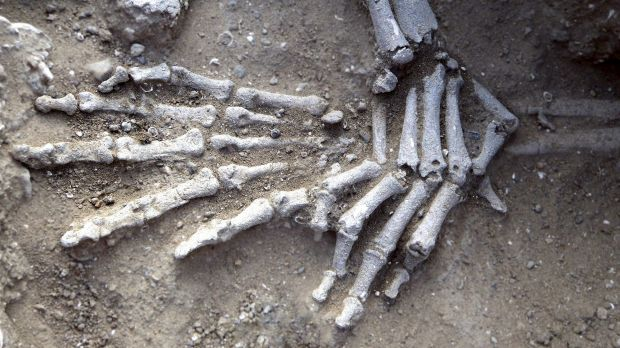 The skeleton of a woman found with fractures on the knees on the ancient shore of Lake Turkana in Kenya. Researchers say ...