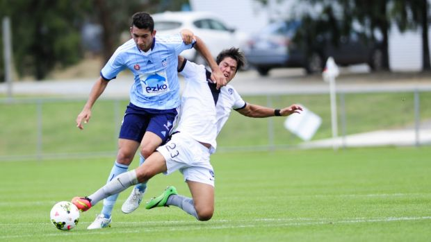 A-League ambitions: Sydney FC NYL defender George Timotheou wants to aim for higher honours next season.