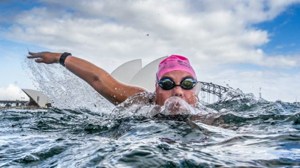 Swimmers competing in The Great Sydney Swim in Farm Cove on Australia Day.