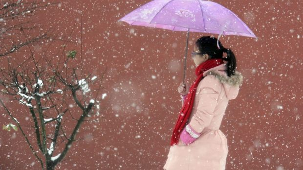 A woman walks through a park during a snowstorm in Linan in eastern China's Zhejiang province, China.