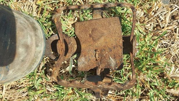 Open: The claw trap found near the Altona bike path, behind the Laverton Football Club.