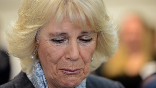 Camilla, Duchess of Cornwall becomes emotional hearing stories of victims of domestic violence.