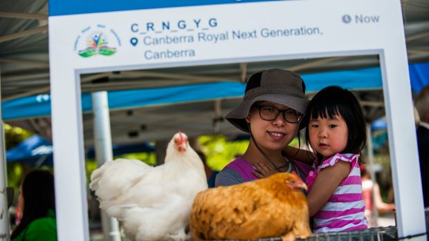 Betty Zhang with her daughter Yuting Hu,3, of Watson checking out the chickens at the Canberra Show's launch.