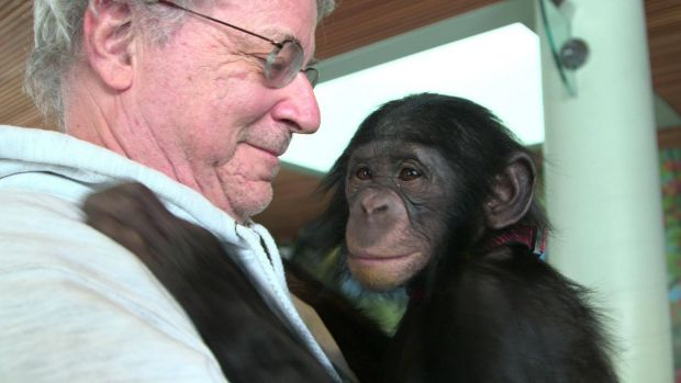 Professor Steven Wise Steven Wise, president of the Nonhuman Rights Project, with Teco the bonobo from the Iowa Primate ...