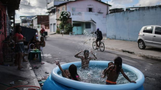 Children bathe in a pool on the street in Recife, Pernambuco state, Brazil last week. The first cases of microcephaly ...