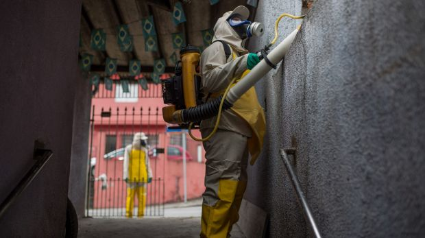 Agents work to combat the larvae of Aedes aegypti in a residential area of Sao Paulo, Brazil on Friday.