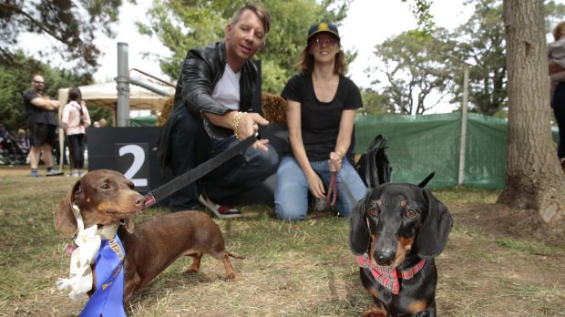 Clinton Menegazzo, of Kingston, with his dog Jazz and Dianne Walton-Sonda, of Queanbeyan, with her dog Mr Jangles, who ...