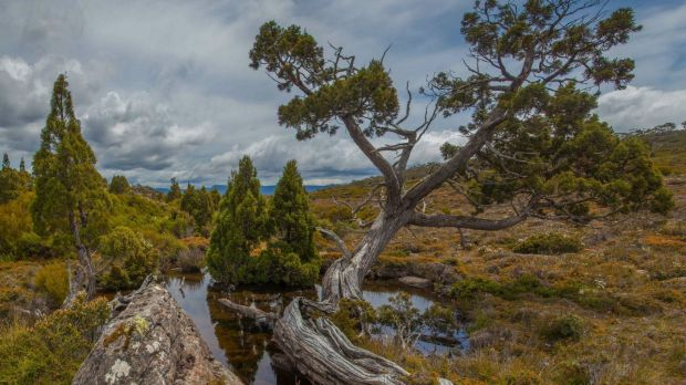 Tasmania's central plateau before the fires.