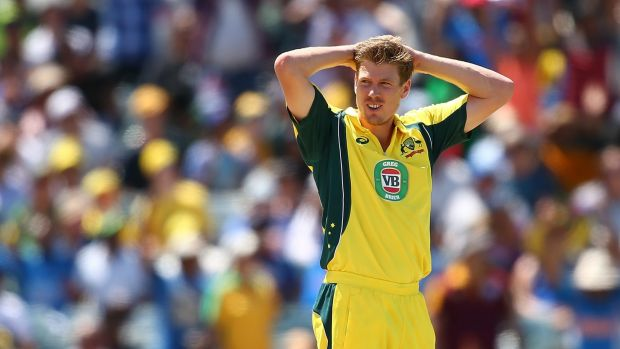 Run feast: James Faulkner says the smaller boundaries of New Zealand grounds could lead to big scores in the one-day series.