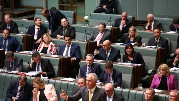 Prime Minister Malcolm Turnbull and his backbench during question time  on Thursday.