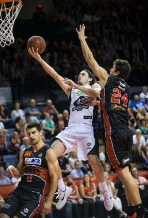 Melbourne United's Stephen Holt dribbles past the defence of Illawarra's Kevin Lisch.