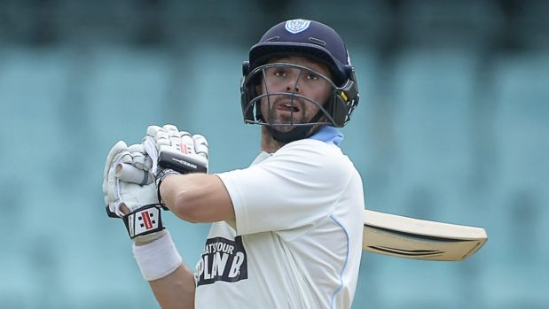 Down and out: Ed Cowan was hit in NSW's clash with Western Australia on Friday.